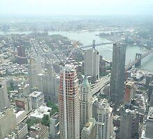 Aerial View of  Lower Manhattan, Manhattan, Brooklyn Bridges, from One World Observatory, World Trade Center Observation Deck, New York City  by lenspiro