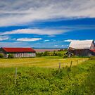 Old Barns at Burnthead Cove, Nova Scotia by kenmo