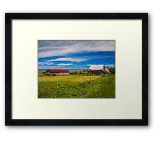 Old Barns at Burnthead Cove, Nova Scotia Framed Print