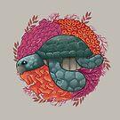 Turtle by erdavid