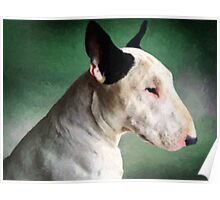 Bull Terrier on Green Poster