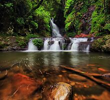Elabana Falls by David James