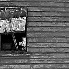 Shack in Yanuya Village by Jen Waltmon