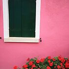 Pink wall, Burano - Italy by fionapine