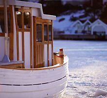 Boat at Sunset by Johan Hagelin