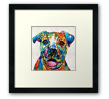 Colorful Dog Pit Bull Art - Happy - By Sharon Cummings Framed Print