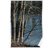 Calming River Poster