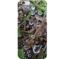 Rain soaked web iPhone Case/Skin