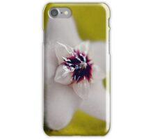 Uno Hoya Carnosa 2 iPhone Case/Skin