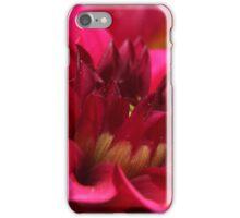 Macro Dahlia iPhone Case/Skin