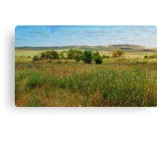 Burra landscape Canvas Print