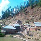 village Sari jubbar by bishan