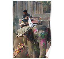 Jaipur Street Scene,Jaipur, Rajasthan, India Poster