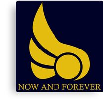 Demacia - Now and Forever 2 Canvas Print