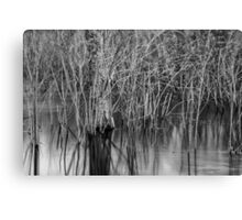 Wind in the Marsh Canvas Print