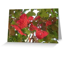 Autumn vine leaves Greeting Card