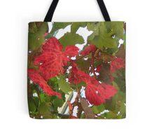 Autumn vine leaves Tote Bag