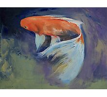 Koi Fish Painting Photographic Print