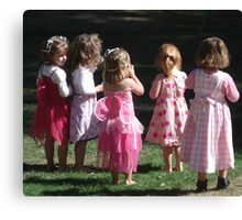 Many Shades of Pinks Canvas Print
