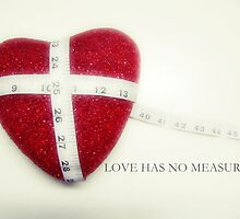 Love has no measure by Stanley  Ambrose