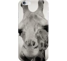 Giraffe I iPhone Case/Skin