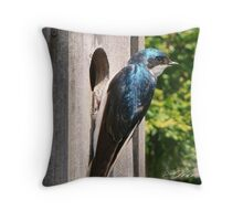 """Checking Out The New Home"" Throw Pillow"