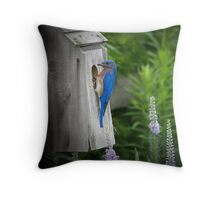 """Inspecting the Homestead"" Throw Pillow"