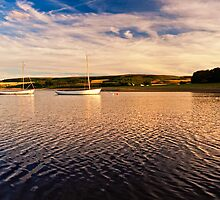 Boats on Derwent Reservoir  by David Lewins