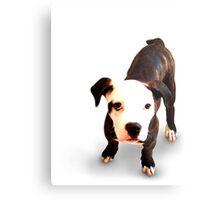 Brindle Bull Terrier Puppy Metal Print