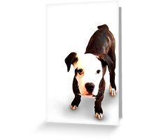 Brindle Bull Terrier Puppy Greeting Card
