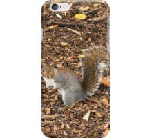 Illinois Squirrel iPhone Case/Skin