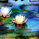 Two Water Lilies Impression by Darlene Lankford Honeycutt