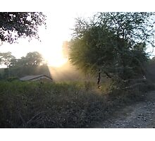 Sunrays.. Photographic Print