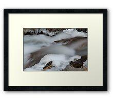 Bear Creek...Winter Framed Print