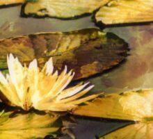 On Golden Pond Sticker