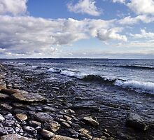 Shoreline on Lake Ontario - Amherst Island, Ontario - 2 by Michael Cummings