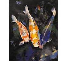 Three Koi Fish Photographic Print
