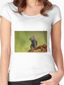 Black Eastern Chipmunk - Ottawa, Ontario Women's Fitted Scoop T-Shirt