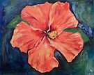 Orange Hibiscus by Michael Creese