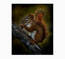Red Squirrel - Photoshop Manipulation Unisex T-Shirt