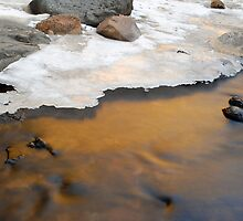 Bear Creek Reflection by chas48