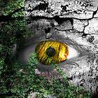 forest eye by Lildudette016