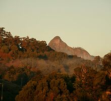 Sunrise Mt Warning  by Howard Melder