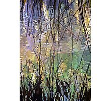 Blue Green Willow Water Photographic Print