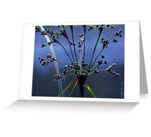 Blue Grasses Greeting Card