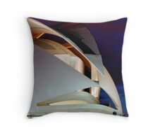 Thirty seconds - CAC Throw Pillow
