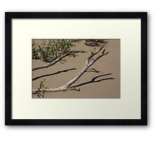 Deadwood on the Beach Framed Print