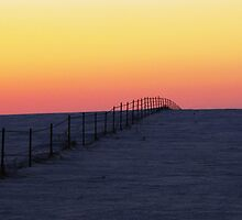 Into the Horizon by lorilee
