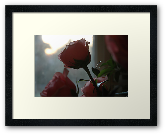 Roses In The Window by Ainsley Kellar Creations
