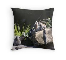 Lemurs Playing! Adelaide Zoo. S. Australia. Throw Pillow